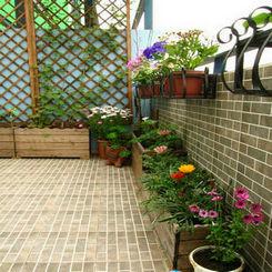 阳台露台窗台花园